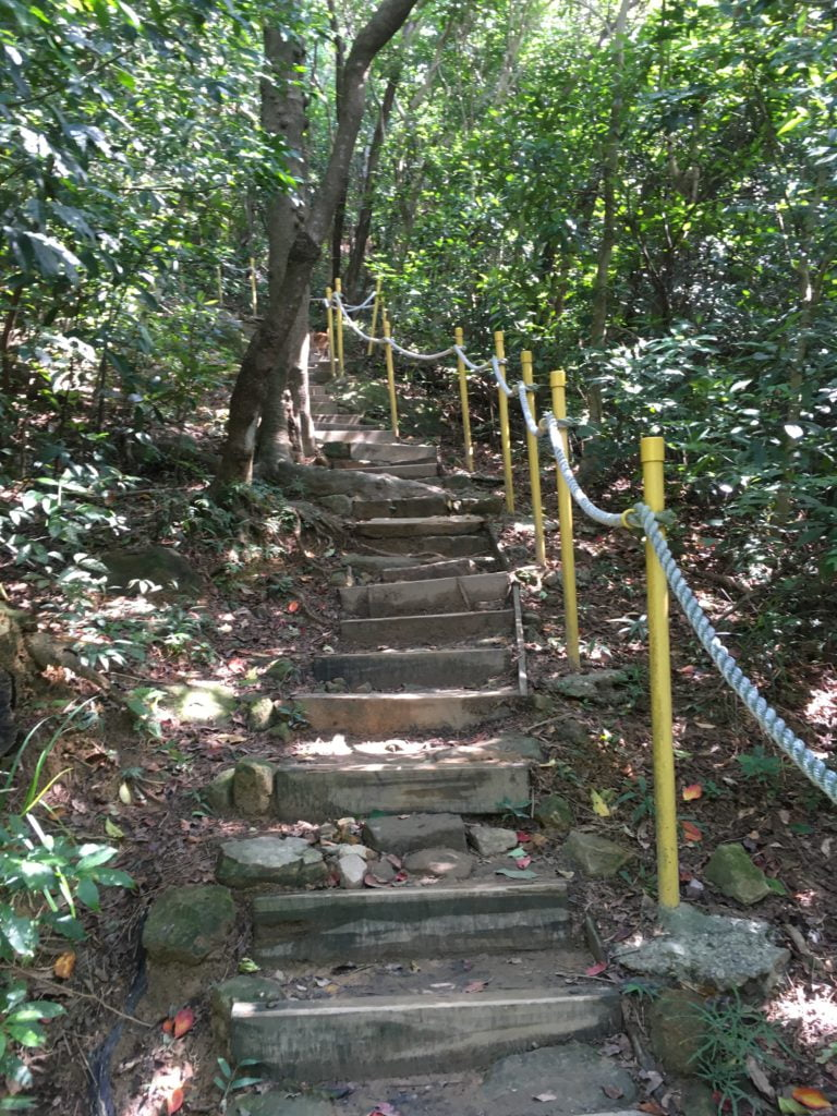台北內湖金面山登山步道-1