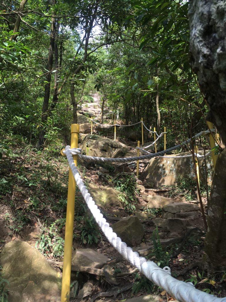 台北內湖金面山登山步道-13